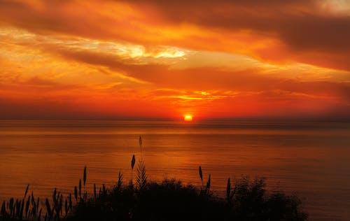 地平線, 天性, 天空, 太陽 的 免费素材照片