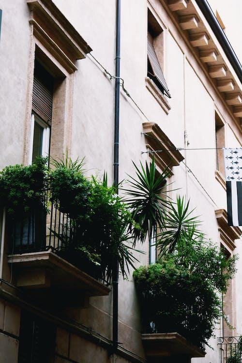 Kostnadsfri bild av arkitektonisk design, arkitektur, balkonger, bostad