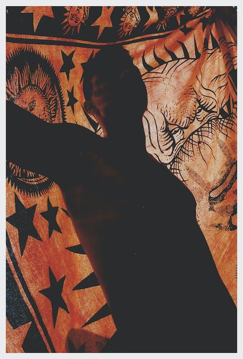 剪影, 橙色背景, 金色的太陽 的 免费素材照片