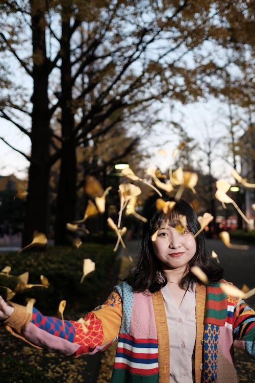 Free stock photo of asian woman, ginkgo