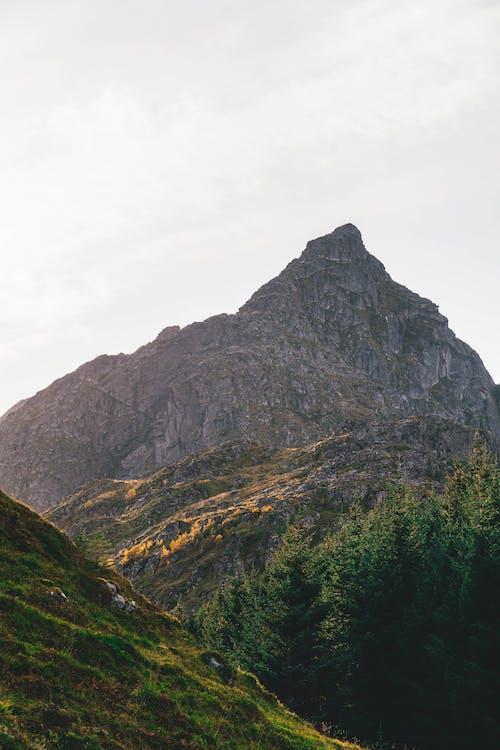 Základová fotografie zdarma na téma cestování, dobrodružství, hora, krása v přírodě