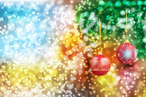 새해, 전나무, 크리스마스 장식의 무료 스톡 사진