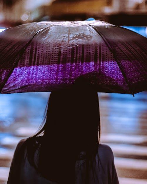 Бесплатное стоковое фото с вид сзади, волос, дождливый, дождь