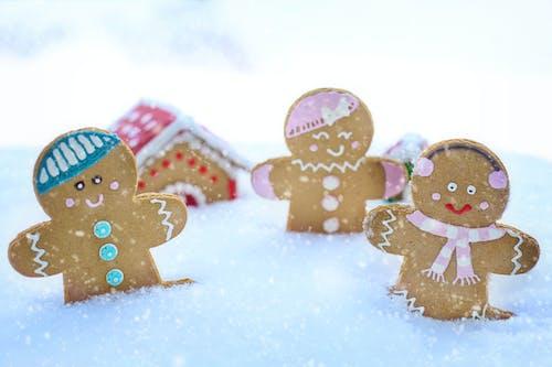 下雪的, 似雪, 傳統, 冬季 的 免費圖庫相片