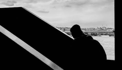 Free stock photo of black and white, bridge, city, cityscape