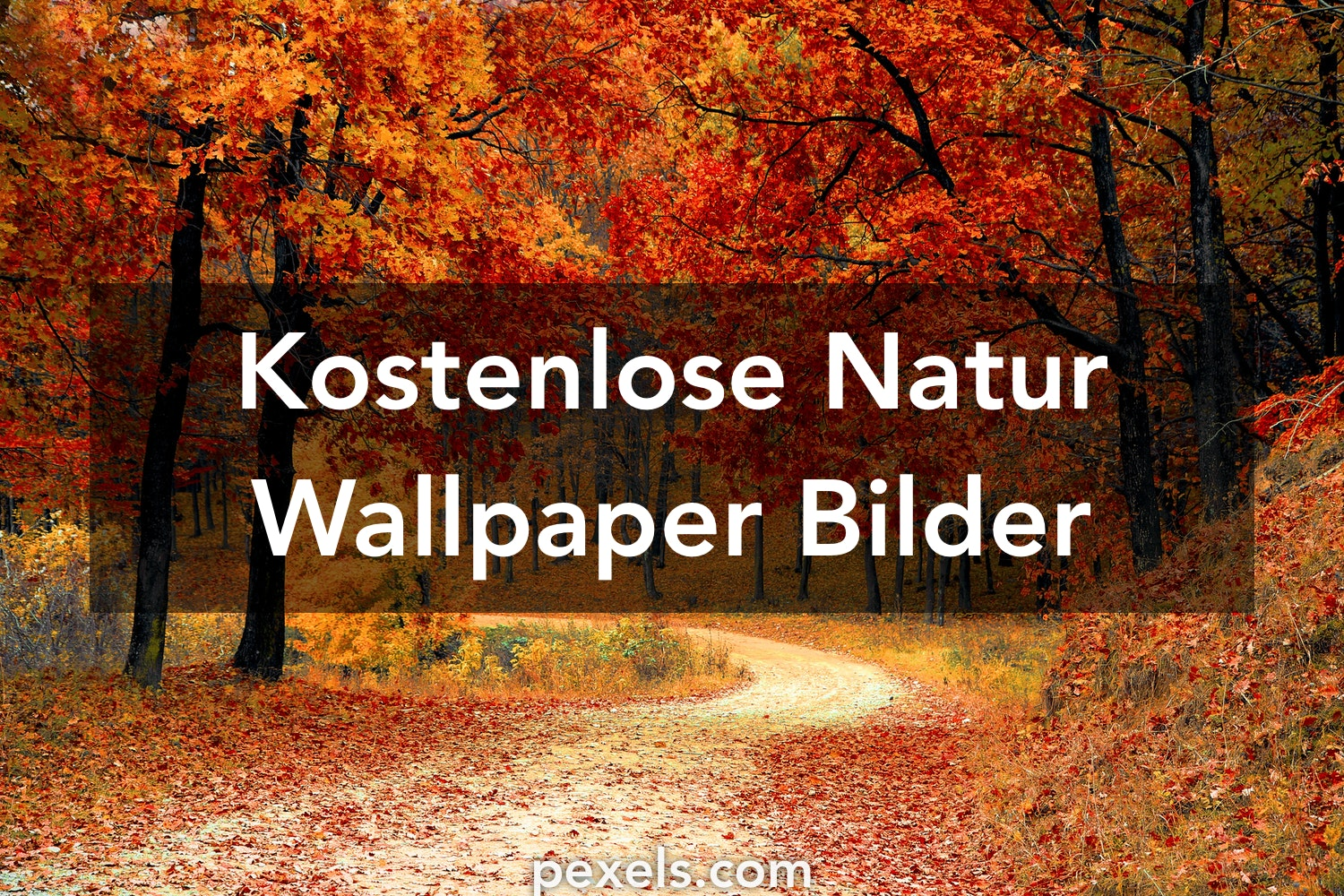 natur wallpaper hintergrundbilder pexels kostenlose stock fotos. Black Bedroom Furniture Sets. Home Design Ideas