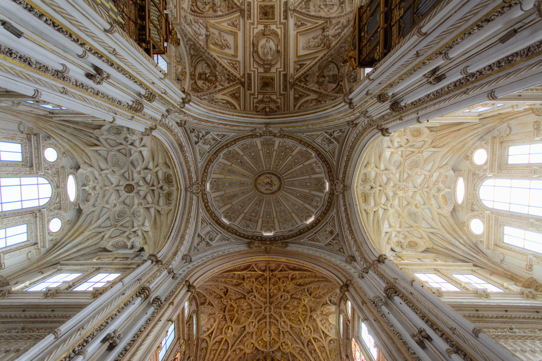 Brown Ceiling Ornate Painting