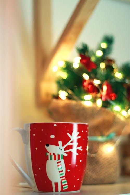 Imagine de stoc gratuită din bokeh, brad de crăciun, ciocolată caldă, Crăciun