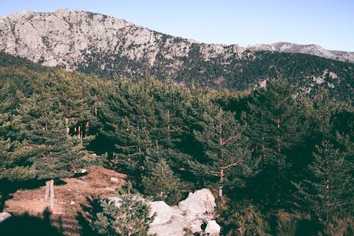Gratis stockfoto met alternatief, avontuur, berg, bergen
