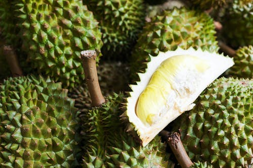 Free stock photo of asian, durian, eat