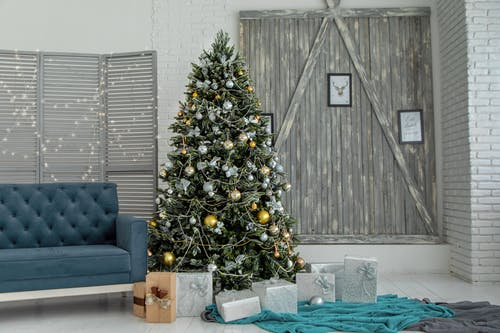 Green Christmas Tree With Gray Gift Boxes Near Sofa