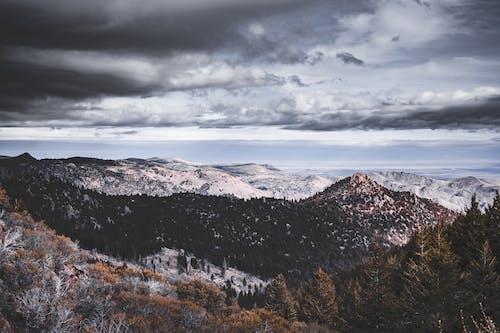 Darmowe zdjęcie z galerii z chmury, ciemne chmury, dolina, drzewa iglaste