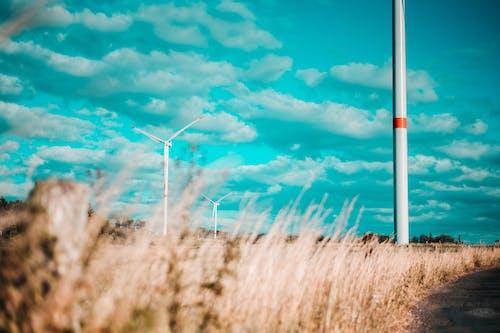 Free stock photo of alternative energy, autumn, blue, clean-energy