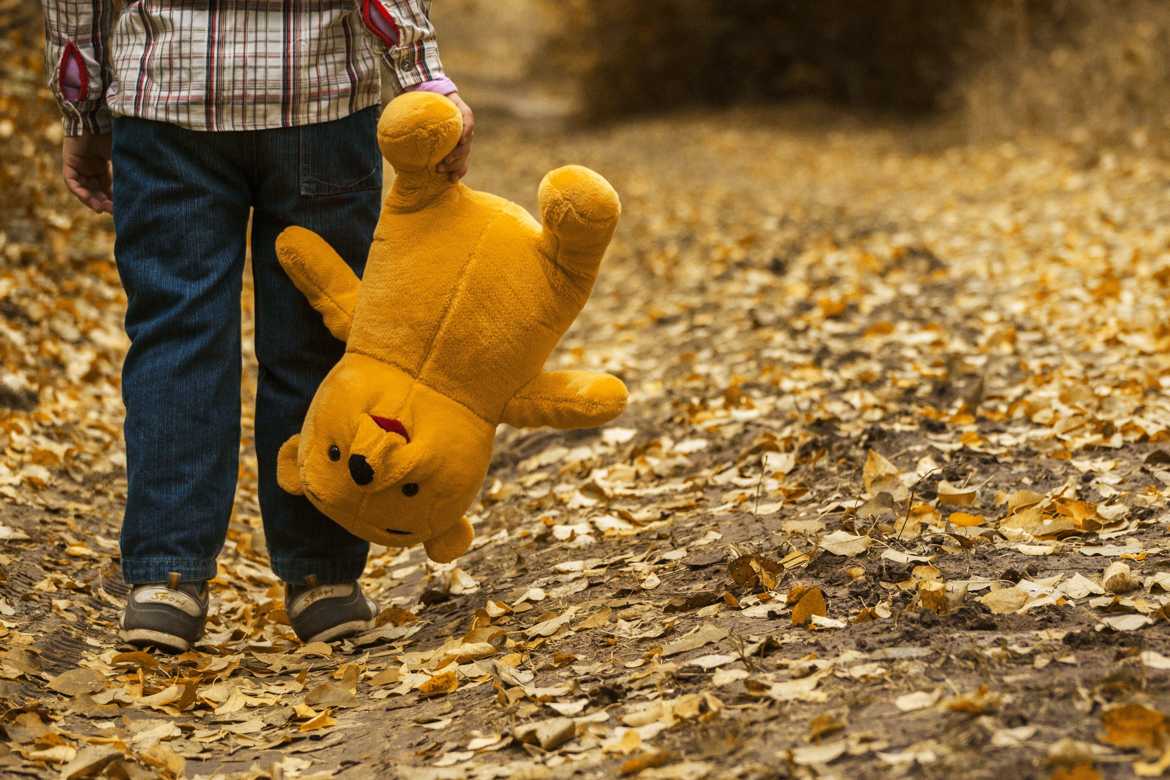 Gratis stockfoto met droge bladeren, kid, kind, knuffelbeer