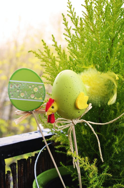 Green and Easter Egg Red Rooster Decor