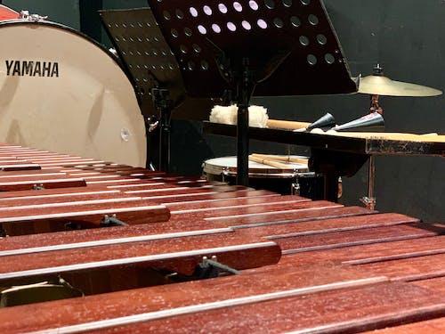 Gratis lagerfoto af instrument, koncert, liveoptræden, musik