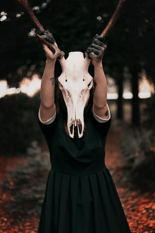 Бесплатное стоковое фото с ведьма, готический, держать, дьявол