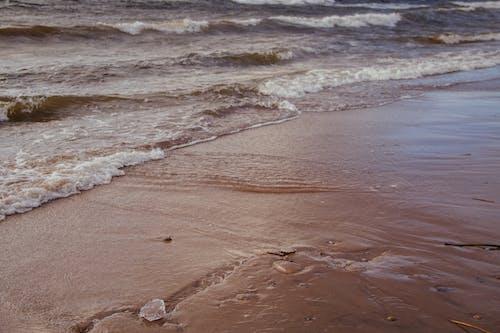和平的, 天性, 寧靜, 岸邊 的 免费素材照片