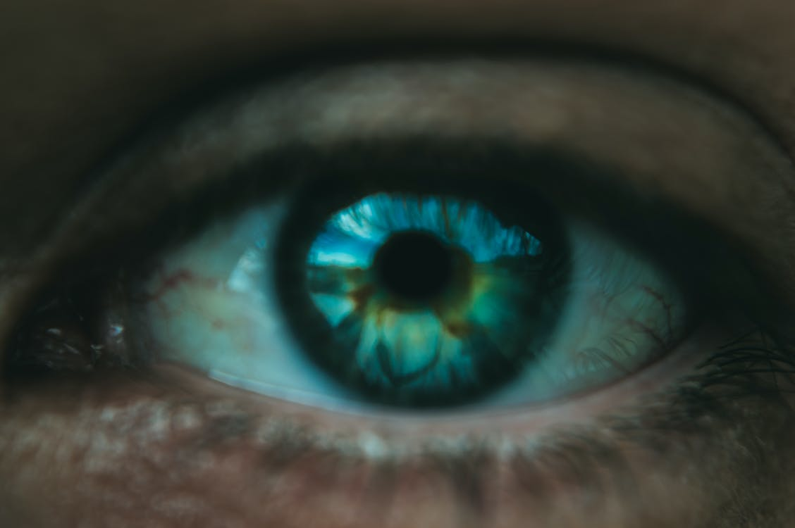 Blue human eye of crop person