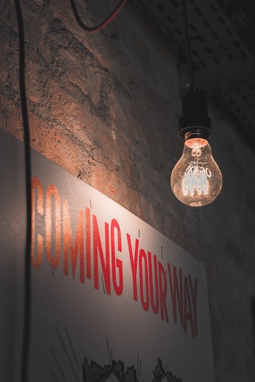 Immagine gratuita di bicchiere, elettricità, illuminato, lampadine