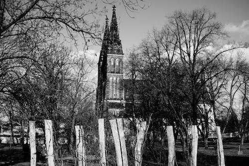 Kostnadsfri bild av bw fotografering, historisk byggnad, historisk plats, kyrkobyggnad