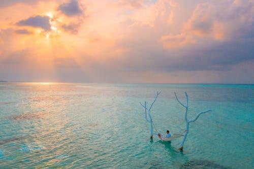 Zdjęcie Morza O świcie