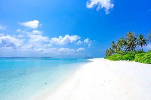 Бесплатное стоковое фото с берег моря, берег океана, голубое небо, горизонт