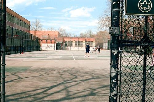 Бесплатное стоковое фото с Активный, активный отдых, баскетбол, баскетболисты