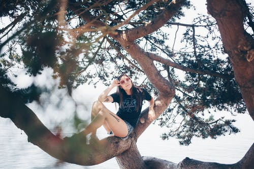 Photo Of Woman Sitting On Tree
