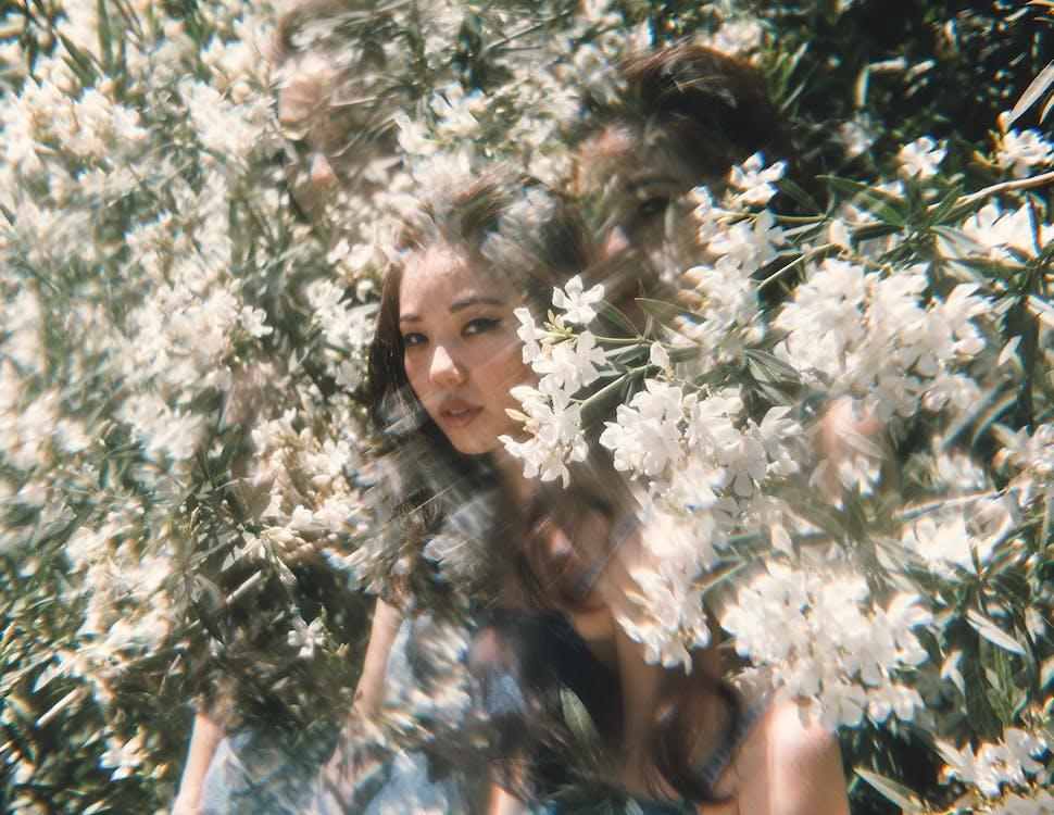 a l'aire lliure, arbre, bellesa