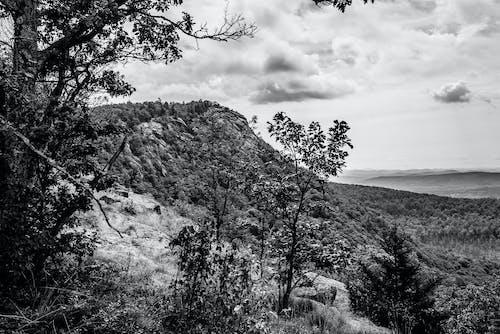 Free stock photo of adirondack, adirondack state park, b&w, landscape