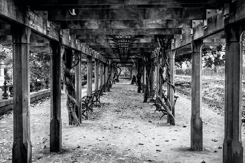 Foto stok gratis bangku, hitam & putih, nyc, taman pusat kota