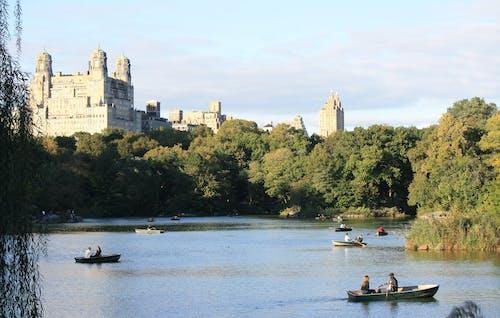 中央公園, 公園, 划艇, 水 的 免费素材照片