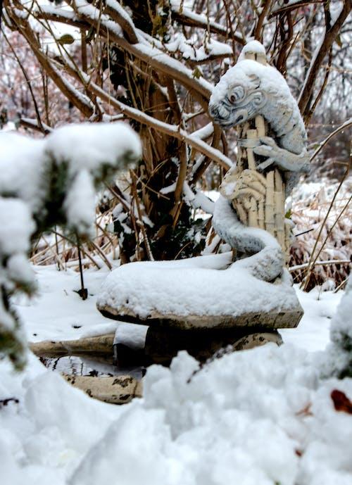 Free stock photo of dragon, snow, Water fountain