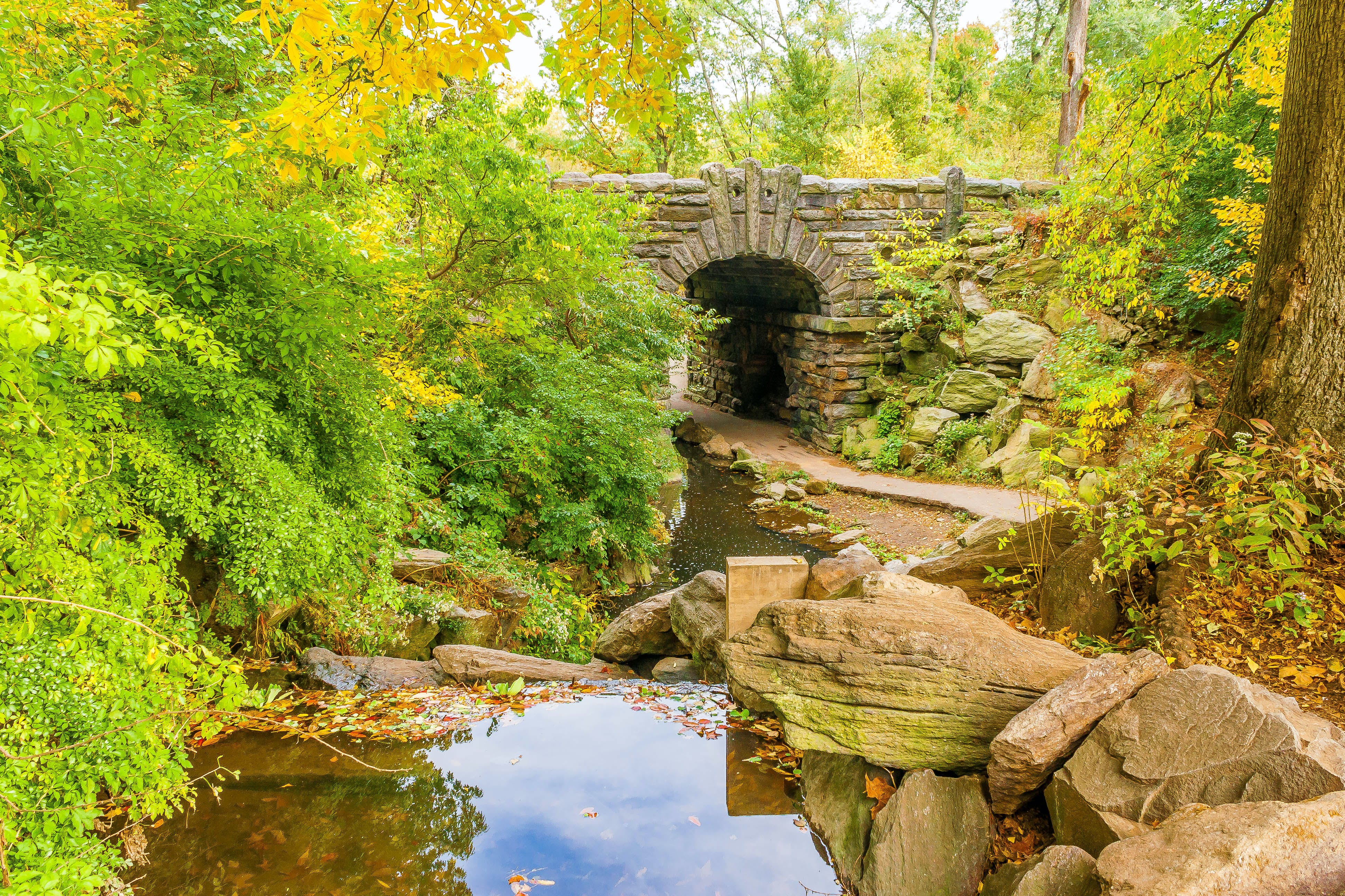 Free stock photo of bridge, central park, Glen Span Arch, nature