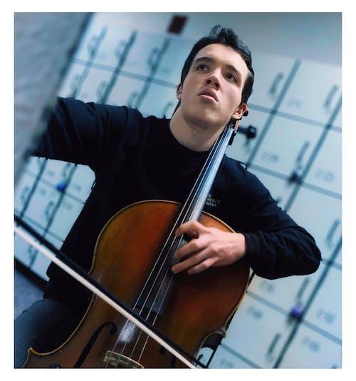 Free stock photo of cello, portrait
