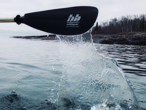 Free stock photo of lake, lake water, paddle