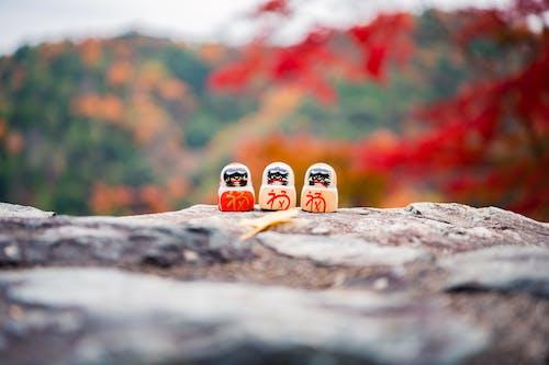 京都, 季節, 專注, 小塑像 的 免費圖庫相片