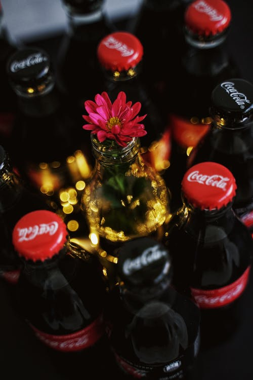 Flower on Coca-Cola Bottle