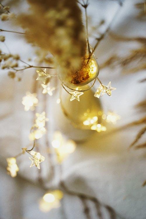 Lampki Choinkowe W Kształcie Gwiazdy