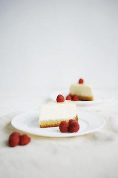 susan s no bake cheesecake