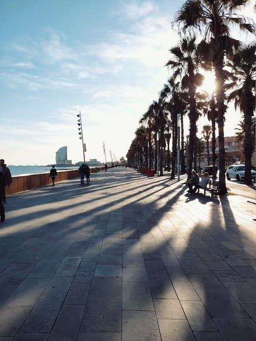 Ảnh lưu trữ miễn phí về barcelona, barceloneta, biển, bờ biển