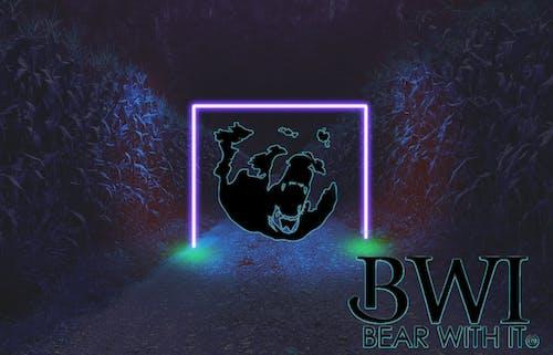 Free stock photo of bear, blue light, light