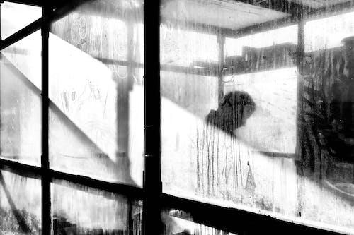 Δωρεάν στοκ φωτογραφιών με άνθρωπος, απόκοσμος, ασπρόμαυρη φωτογραφία, ασπρόμαυρο