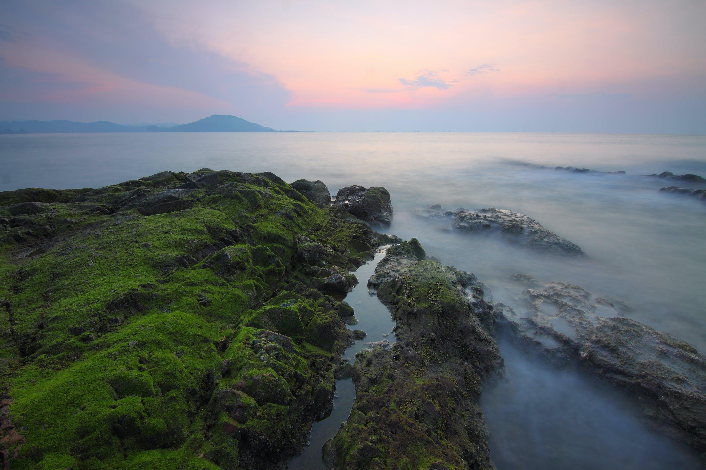Foto stok gratis air, alam, Batuan berlumut, Fajar