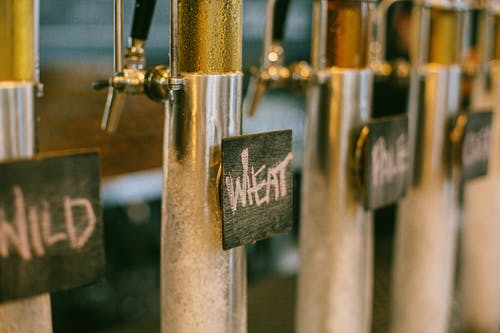Free stock photo of alcohol, beer, beer on tap, brewery