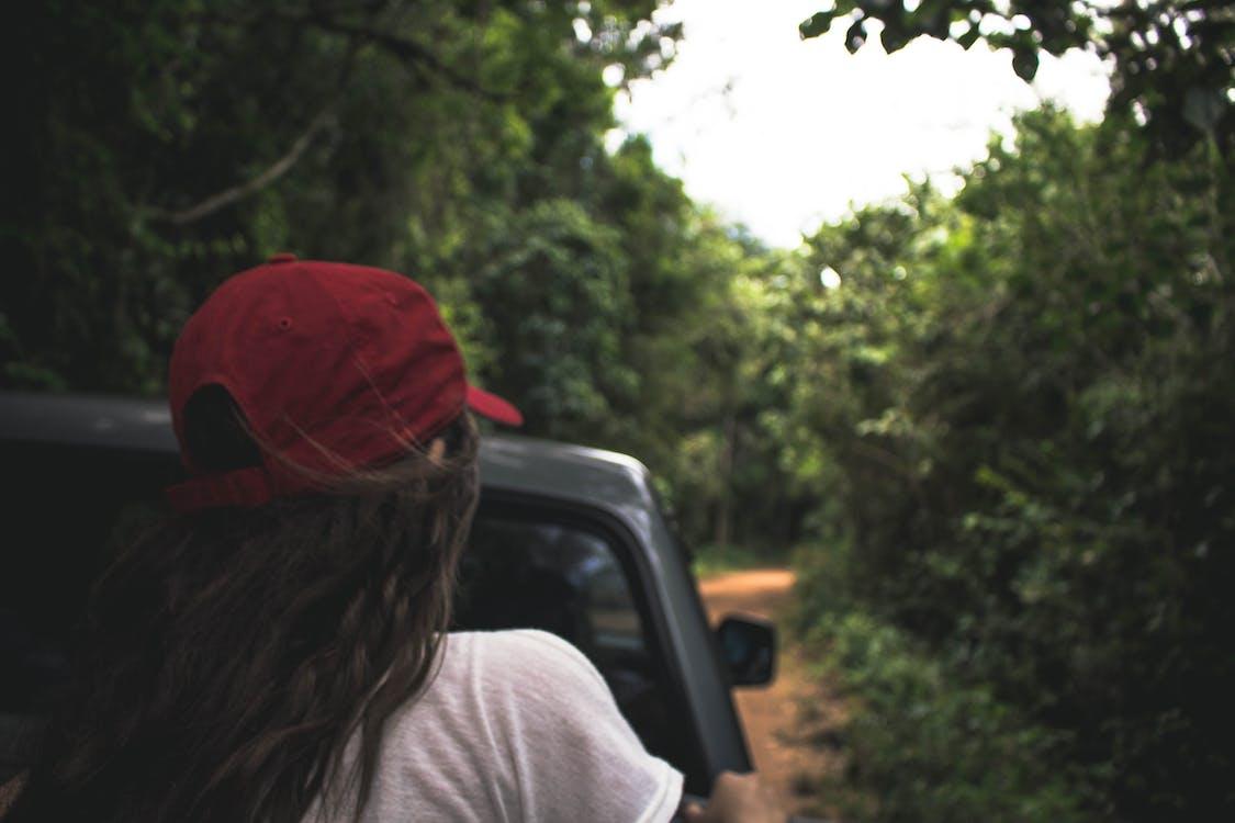 florest, 亚马逊, 女孩 的 免费素材图片