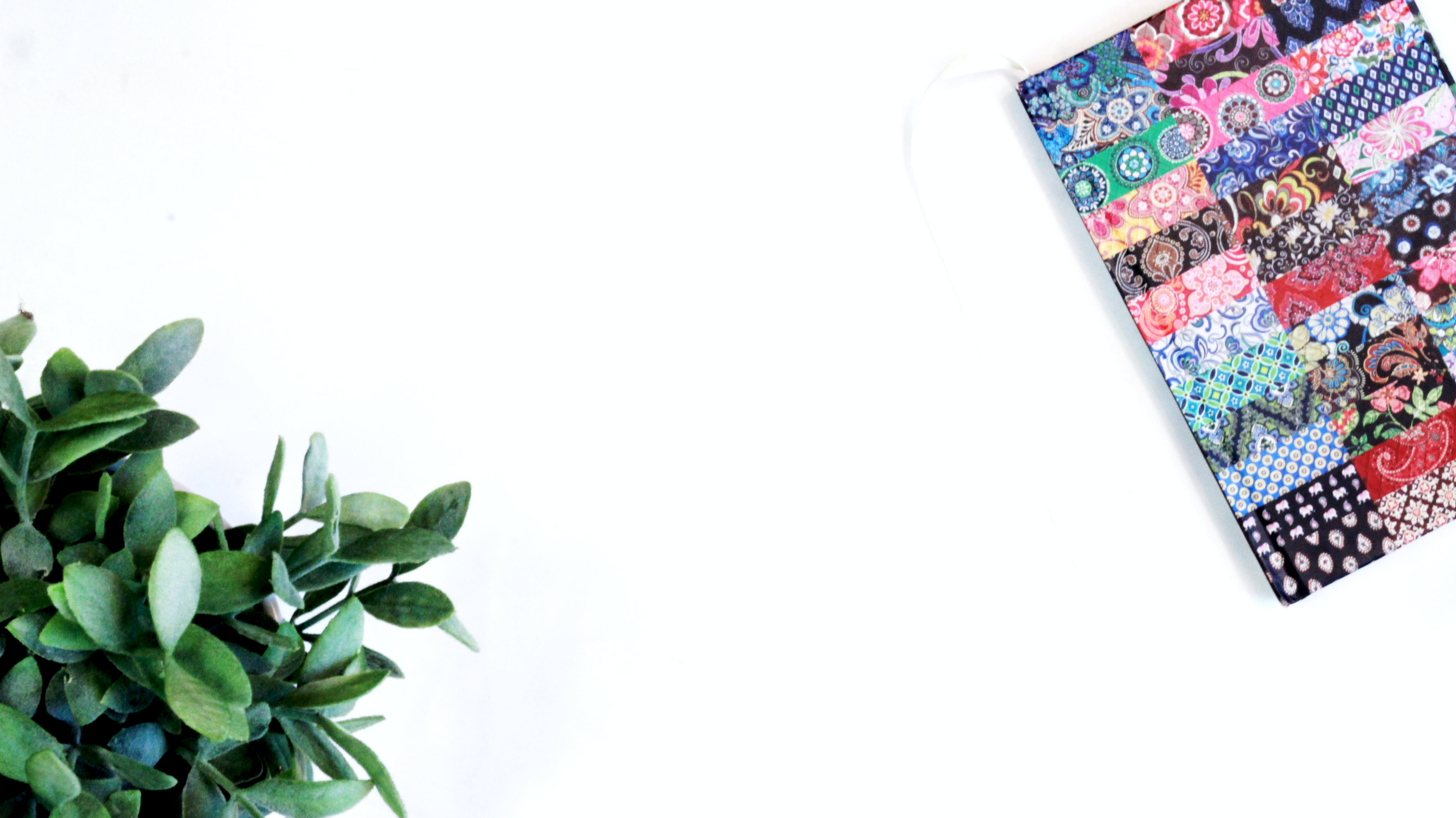 Kostenloses Stock Foto zu blog, flach lag, grün, journal