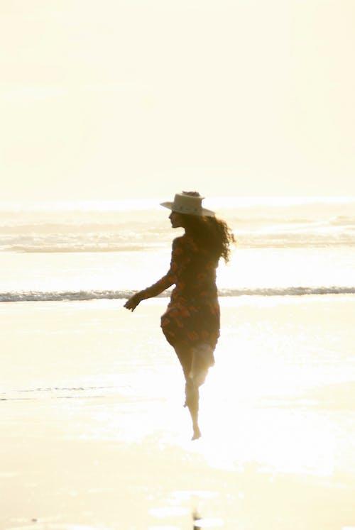 Gratis lagerfoto af gylden time, Magi, sollys