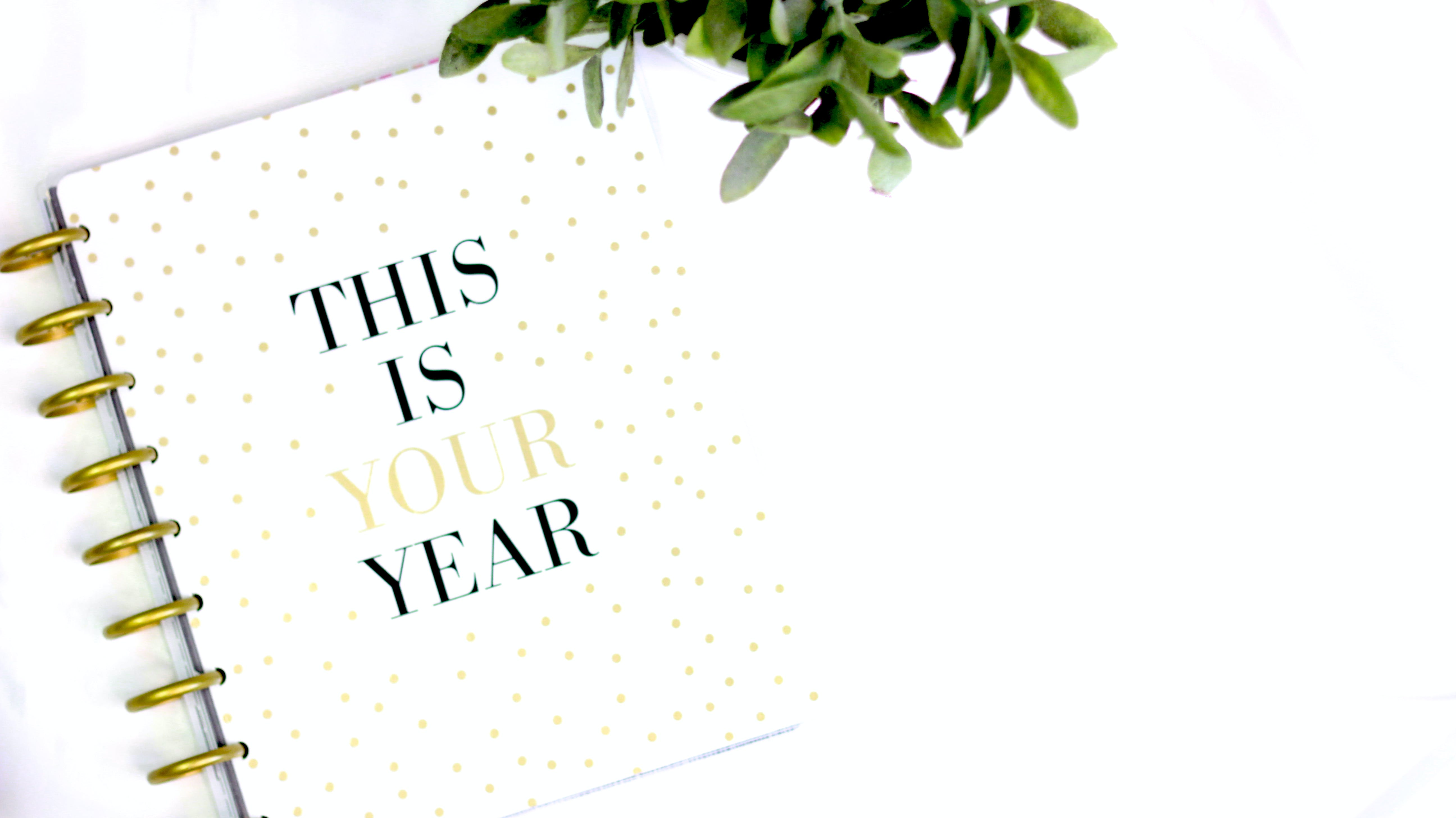 This Is Your Year Notebook